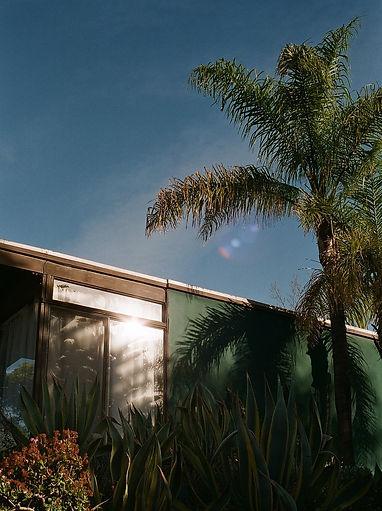 Lea Banchereau   Los Angeles
