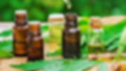 CBD Oil Featured.jpg