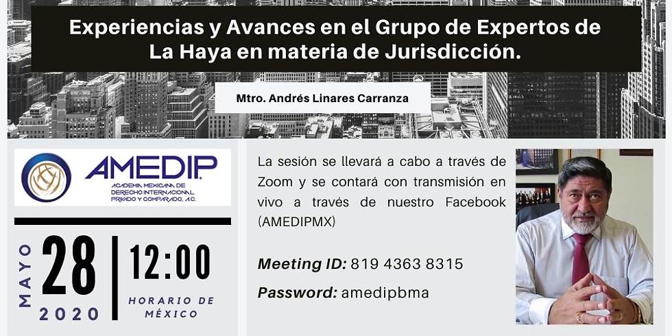 Experiencias y Avances en el Grupo de Expertos de La Haya en materia de Jurisdicción