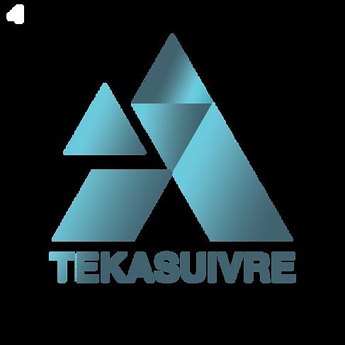 logo blog tekasuivre.png