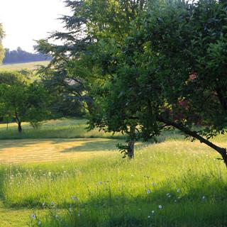 Andrew Duff Garden Design