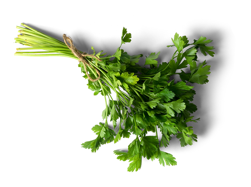 Plants-and-Herbs_edited.png
