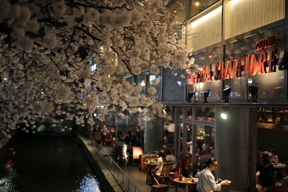 kiyamachi-kyoto-nightlife