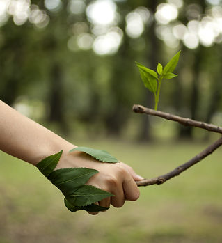 Environment concept.jpg Handshake betwee