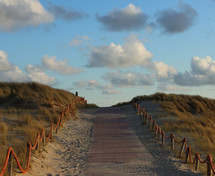 The only way is up. Texel