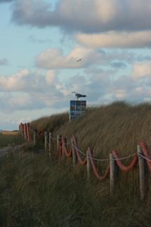 Baywatch De Koog Texel
