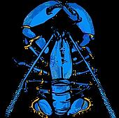 TM Logo_Loni vert[2305843009219483169].p