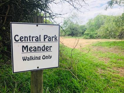 Central Park Meader Trail