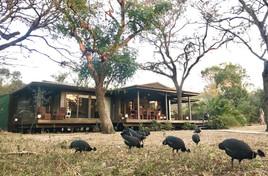 Imani Bush House and guinea fowl