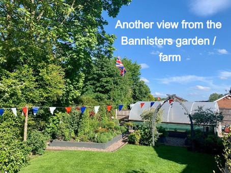 Gardens part 2