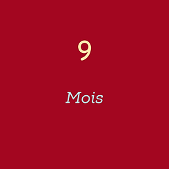 9 Mois.png