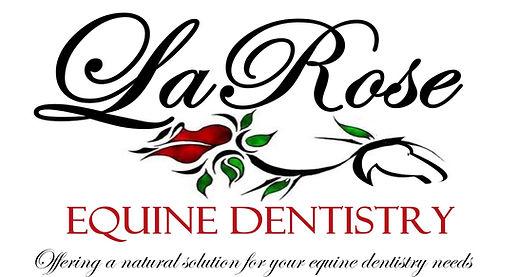 LaRose+Equine+Dentistry+Banner2-30+-+for