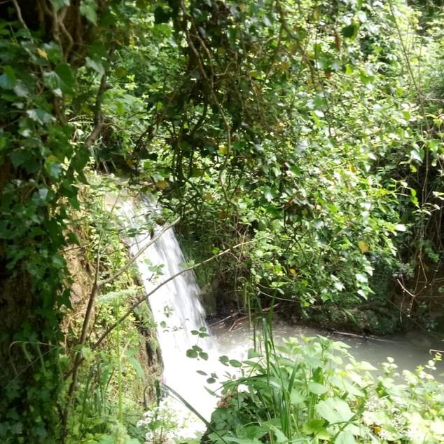 Piccola cascata sul fosso del Corvo a valle dell'Eremo dei Frati Bianchi