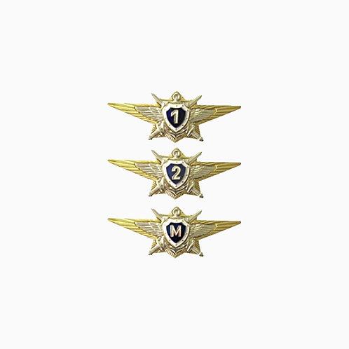 Знаки классности МО РФ (командный состав)