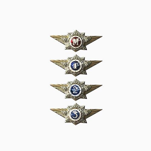 Знаки классности МВД РФ (командный состав)