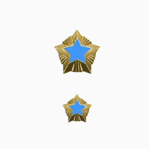 """Звезда """"Ространснадзор"""""""