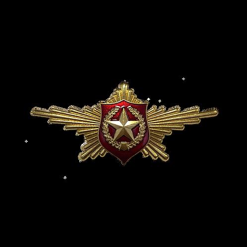 """Нагрудный знак """"Рота почетного караула"""" Сухопутные войска"""
