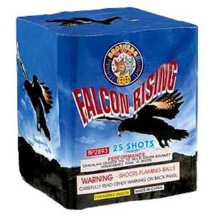 FALCON RISING BP2893-16