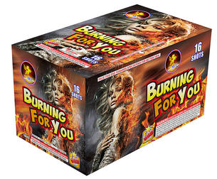 BURNING FOR YOU TS5313