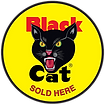 Blackcatsoldhere.png