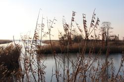 Curonian lagoon
