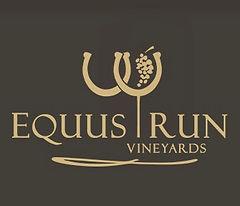 equus run.jpg