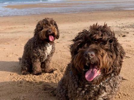 J&D at seaside