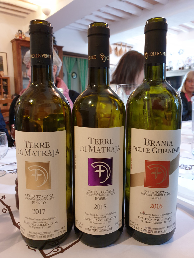 Vinprovning Fattoria Colleverde