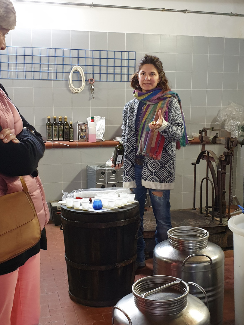 Olivoljeprovning Fattoria Colleverde