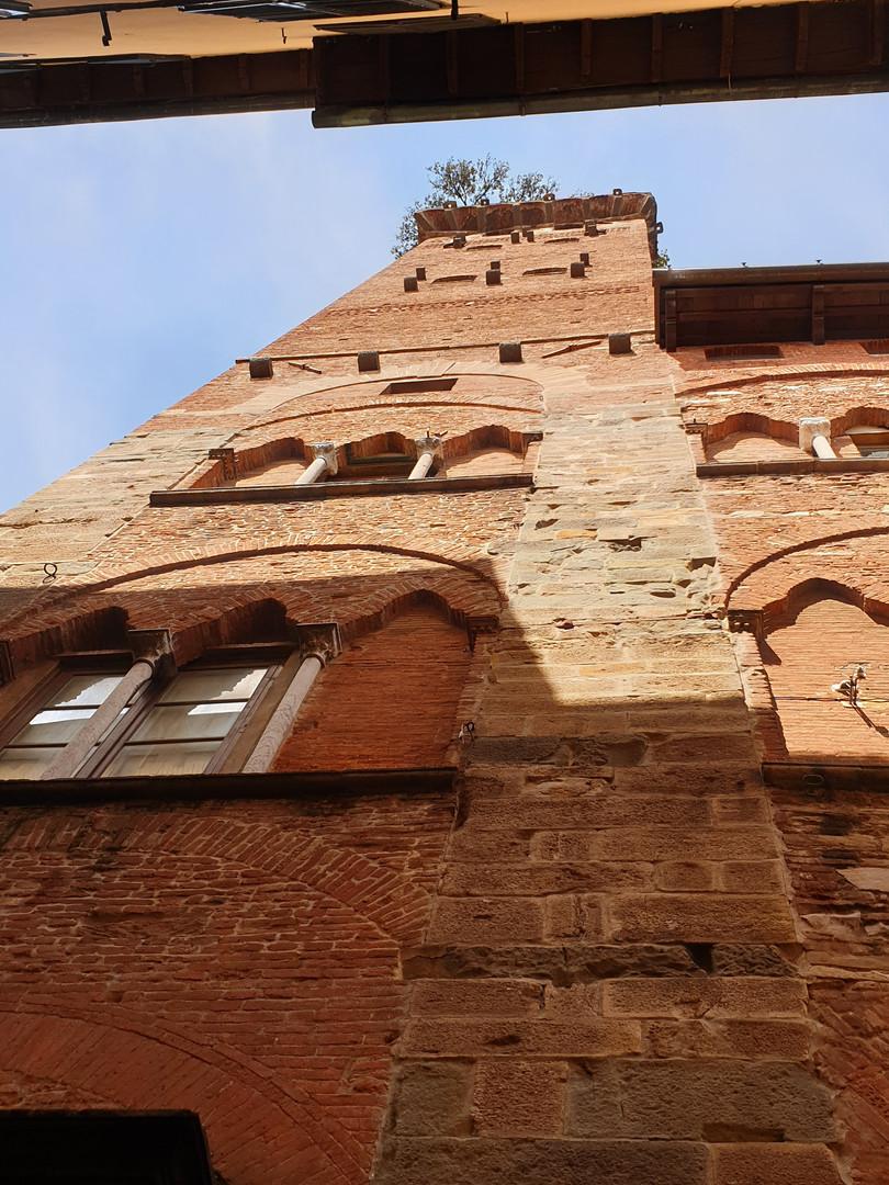 Torre Guinnigi Lucca