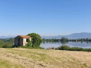 A Walk around the Lake Gherardesca