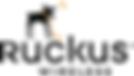 Ruckus Wireless Installers