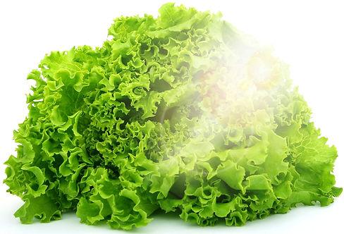 lettuce-1239155_1920_edited.jpg
