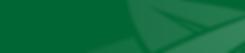 green website strip.png