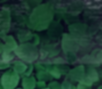 image processing background 2.png
