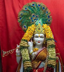 2019-GaneshTemple-Maharudram-42_edited.j