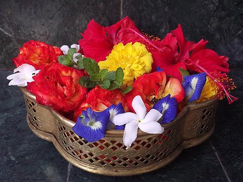 Sponsor Flowers for a week