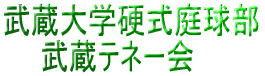 テネー会ロゴ.jpg