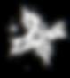 星座2のコピー.png