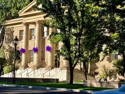 Paint the Town Purple