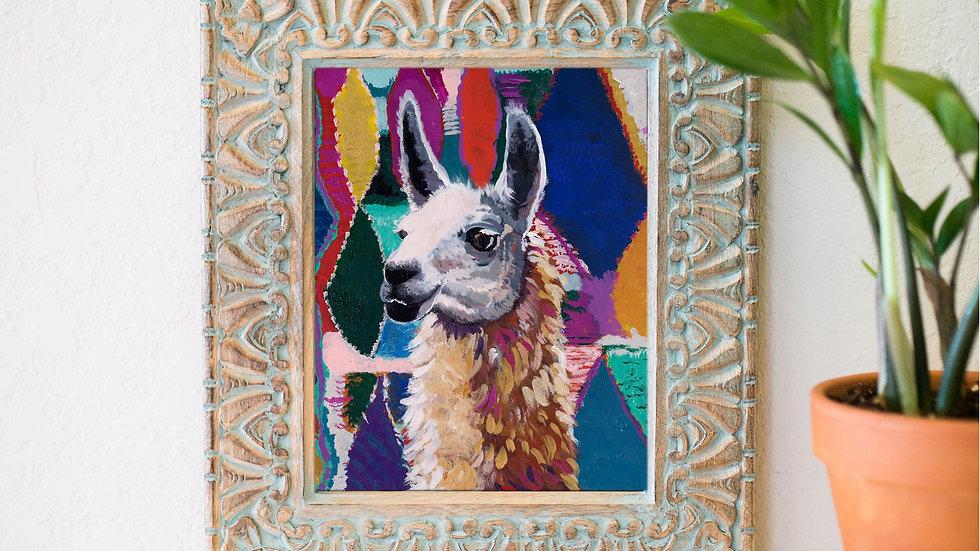 Elliot the llama