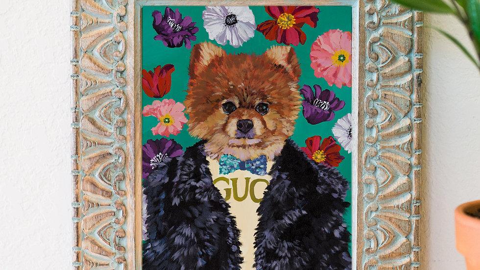Gucci Pomeranian