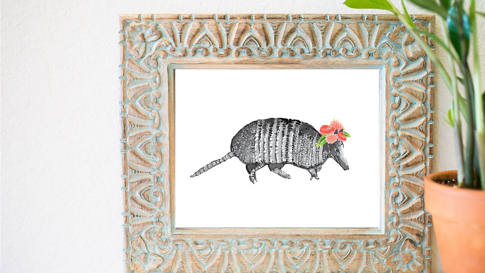 Lovely Armadillo fine art print
