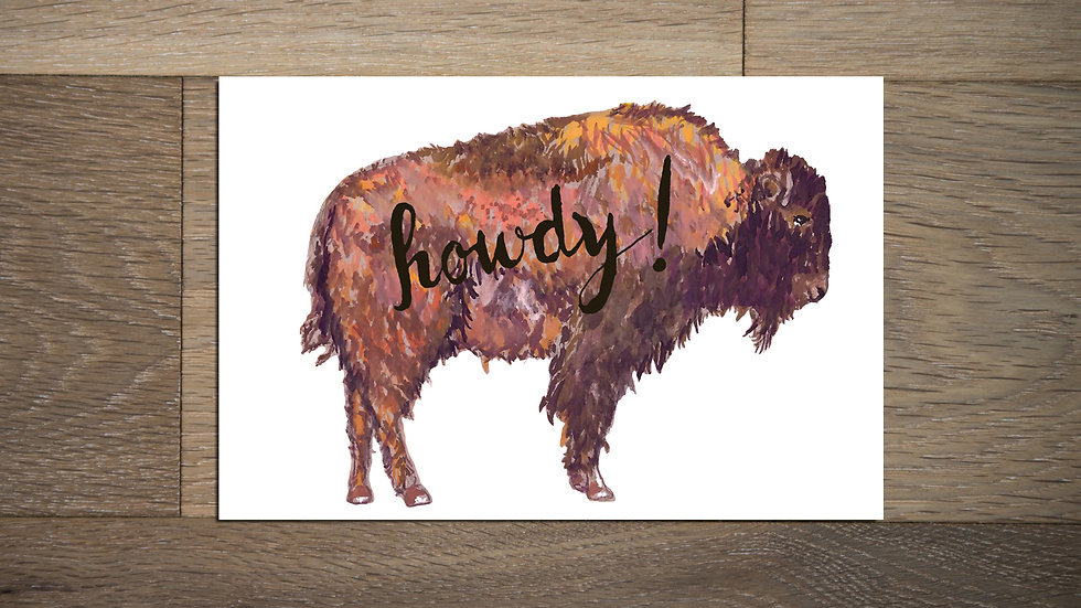 Set of 8 Buffalo Postcards