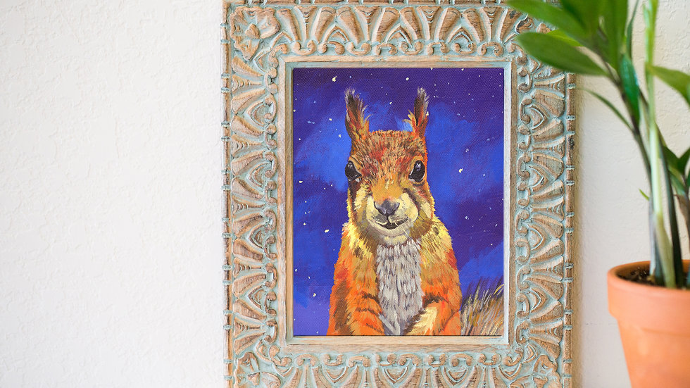Squirrel and night sky