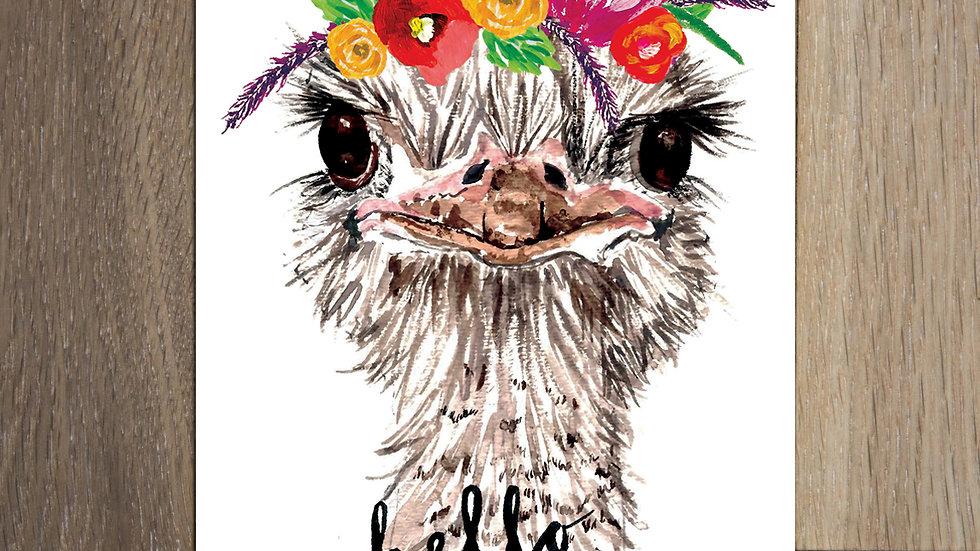 Set of 8 Ostrich Postcards