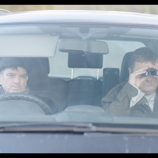 Cabin fever in a car