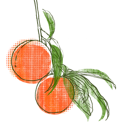 peaches_linework001.png