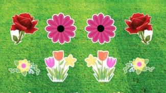 Flowers_Snip.JPG