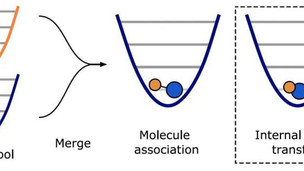 Researchers extend the life of the dipole molecule